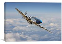 P51 Mustang - Symphony in Blue, Canvas Print