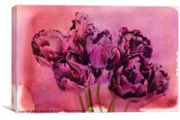 Watercolour Tulips, Canvas Print