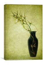 Spider Orchid in Oriental Vase, Canvas Print