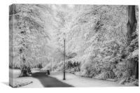 Infrared Wonderland, Canvas Print