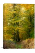 Forest Glow, Canvas Print