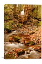 Falling through Lumsdale, Canvas Print