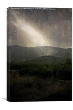 A Ray of Hope, Canvas Print