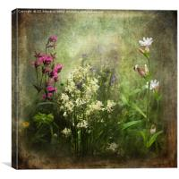 Wildflower Symphony, Canvas Print