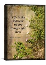 Life Is..., Canvas Print