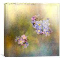 Forget-me-not Blues, Canvas Print