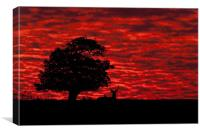 Shepherds' Warning, Canvas Print