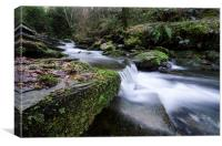 Waterfall at St Nectans Glen, Canvas Print