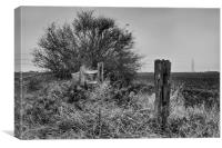 Fence Line And Power Lines, Canvas Print