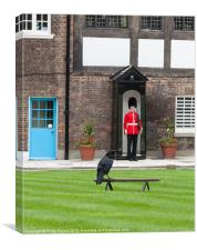 Raven at Tower of London, Canvas Print