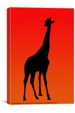 African Giraffe at Sunset, Canvas Print