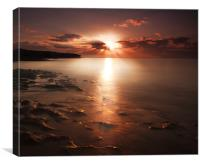 Morning star, Canvas Print
