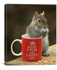Keep Calm and Nibble Nuts, Canvas Print