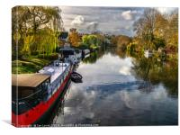 View Upriver From Whitchurch Bridge, Canvas Print