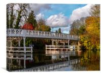 Autumn Colours At Whitchurch Bridge, Canvas Print