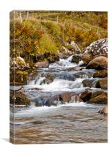 Rushing Waters, Canvas Print