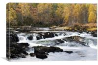Autumn on the River Affric, Canvas Print