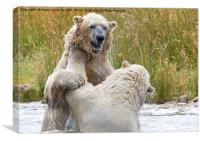 Male Polarbear Playing in Lake, Canvas Print