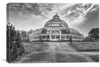 Palm house, Sefton Park, Canvas Print