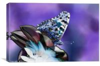 Butterfly on flower, Canvas Print