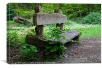 Weedy Bench, Canvas Print