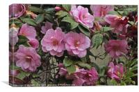 Camellia Tapestry, Canvas Print