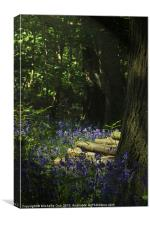 In the Dappled Shade, Canvas Print