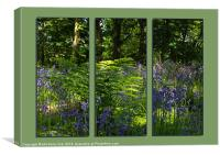 Bluebell Triptych 1, Canvas Print