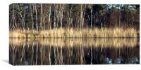 Reflections in Lake, Canvas Print