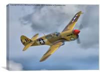 Merlin-Engined P-40F, Canvas Print