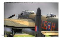 A Moody Just Jane , Canvas Print