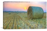 Bales at Sunset 2, Canvas Print