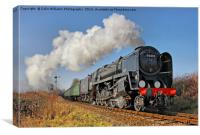 92212 Approaches Ropley 2, Canvas Print