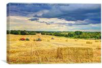 Creating Straw Bales After Harvest Of  Barley, Canvas Print