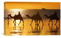 Beach Camels at Sunset 2, Canvas Print