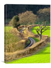 Winding Country Lane, Canvas Print