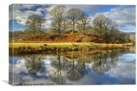 The Trees By The Brathay, Canvas Print
