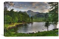 Blea Tarn In June, Canvas Print