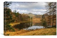 Blea Tarn,The Lake District, Canvas Print