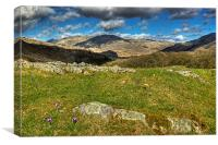 Spring In The Duddon Valley, Canvas Print