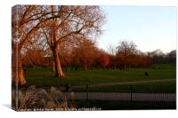 Greenwich Park at Sunset, London, England  , Canvas Print