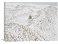 South Ramparts of Maiden Castle, Dorset,UK, Canvas Print