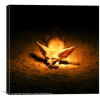 Golden Desert Fox, Canvas Print