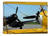 Old Warbirds., Canvas Print