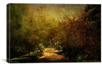 Pathway into the unknown ( Alameda Gardens), Canvas Print