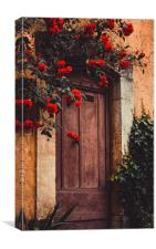 Doorway, Valbonne. France, Canvas Print