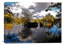 Stockers Lake in reflection, Canvas Print