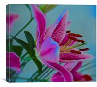 Lily flower Art Attack, Canvas Print