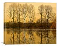 Trees reflection across the lake                 , Canvas Print