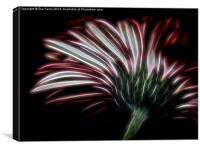 Sometimes you have to look underneath!, Canvas Print